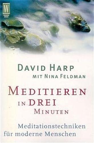 9783499263729: Meditieren in drei Minuten