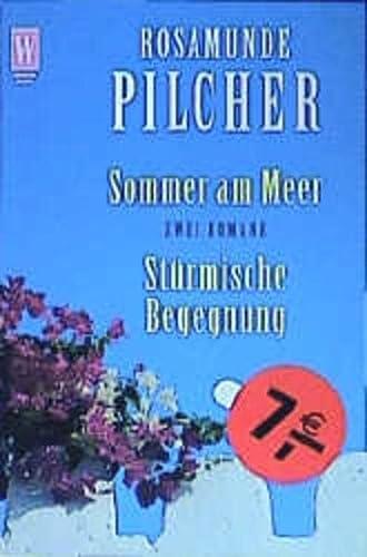 9783499263873: Sommer am Meer / Stürmische Begegnung. Zwei Romane.