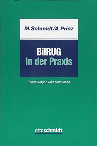 BilRUG in der Praxis: Marc Schmidt