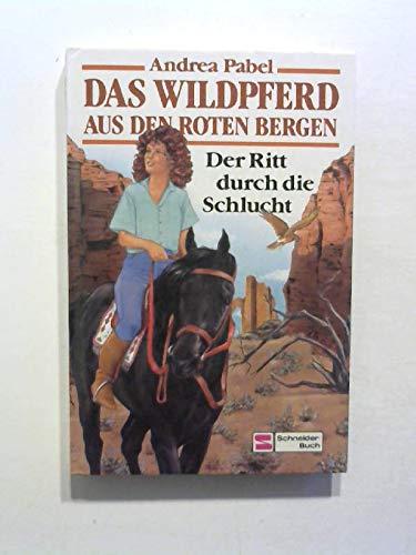 9783505096198: Der Ritt duch die Schlucht, Bd 2