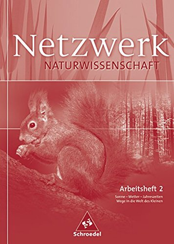 9783507865068: Netzwerk Naturwissenschaft: Arbeitsheft 2