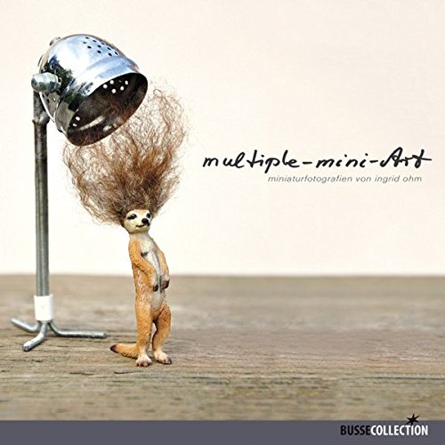 9783512040221: Multiple-mini-Art: miniaturfotografien von ingrid ohm