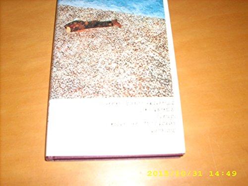 9783518029398: Der Spiegeltag: Roman (German Edition)