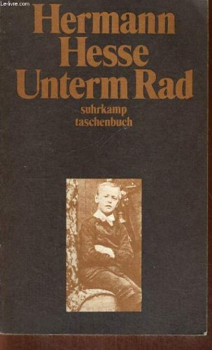 9783518065525: Unterm Rad