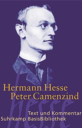 9783518188835: Peter Camenzind