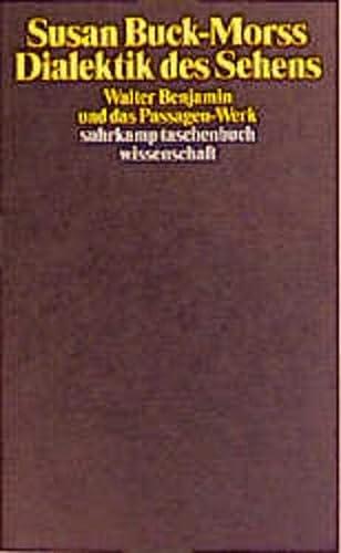 9783518290712: Dialektik des Sehens: Walter Benjamin und das Passagen-Werk
