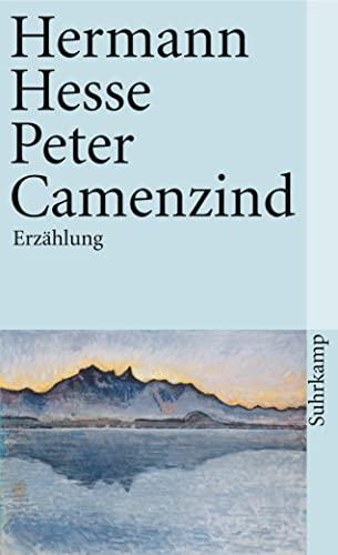 9783518366615: Peter Camenzind (German Edition)