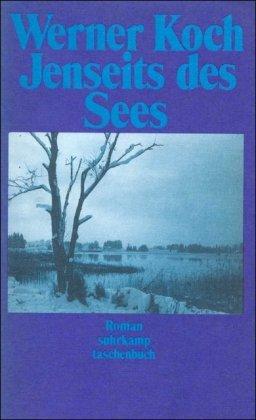 9783518372180: Jenseits des Sees (Suhrkamp Taschenbuch)
