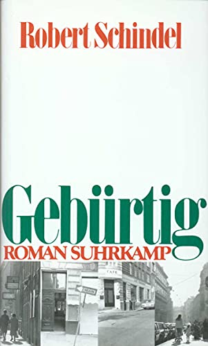 9783518404386: Gebürtig: Roman (German Edition)
