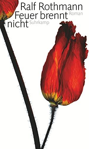 9783518420638: Feuer brennt nicht: Roman