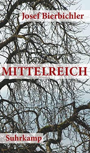 9783518422687: Mittelreich