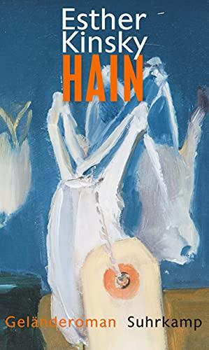 Hain: Geländeroman (German Edition): Kinsky, Esther
