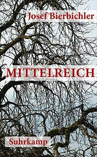 9783518464083: Mittelreich