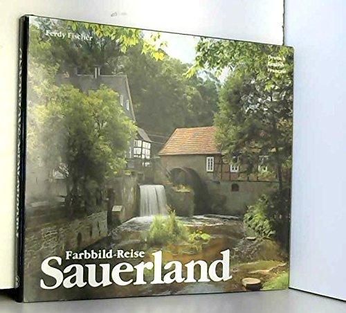 Sauerland: Land und Leute, Kunst und Kultur (German Edition): Ferdy Fischer