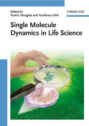 Single Molecule Dynamics in Life Science: Toshio Yanagida