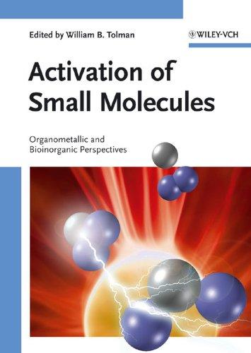 9783527313129: Activation of Small Molecules: Organometallic and Bioinorganic Perspectives