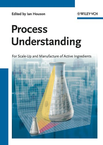 9783527325849: Process Understanding: For Scale-Up and Manufacture of Active Ingredients