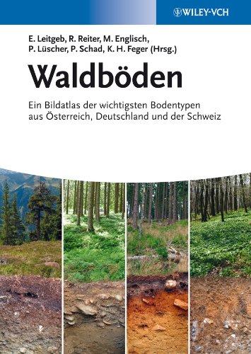 Waldböden: Ernst Leitgeb
