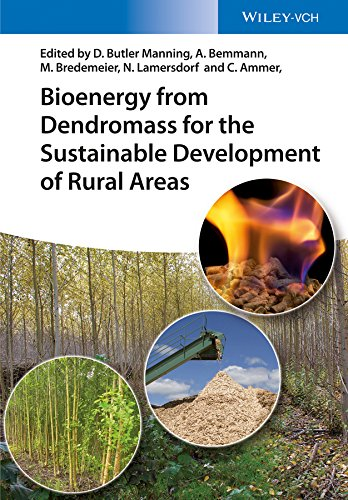9783527337644: Bioenergy from Dendromass for the Sustainable Development of Rural Areas