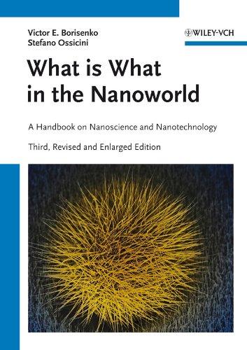 9783527411412: Borisenko, V: What is What in the Nanoworld