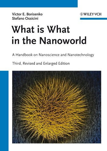 What is What in the Nanoworld: A Handbook on Nanoscience and Nanotechnology (Hardback): Victor E. ...