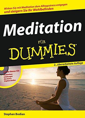 9783527702800: Meditation Fur Dummies