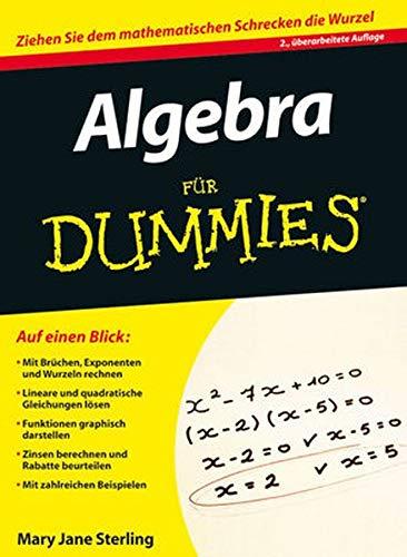 9783527707928: Algebra Fur Dummies