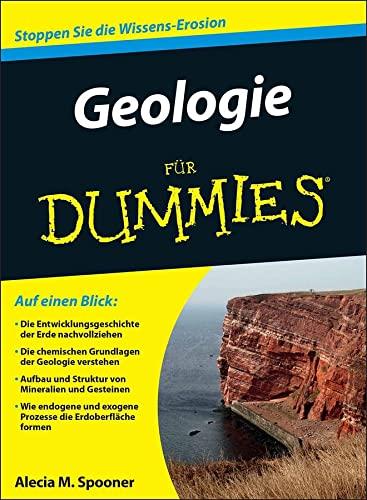 9783527710898: Grundlagen der Geologie Fur Dummies