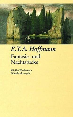 9783538053731: Fantasie- und Nachtstücke.