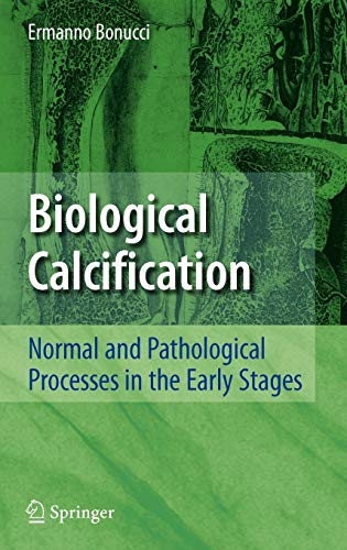 9783540360124: Biological Calcification: Normal and Pathological Processes in the Early Stages