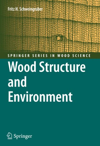 9783540482994: Wood Structure and Environment (Springer Series in Wood Science)