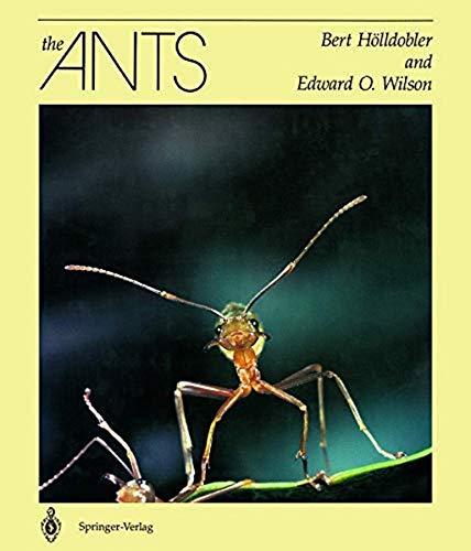 9783540520924: The Ants