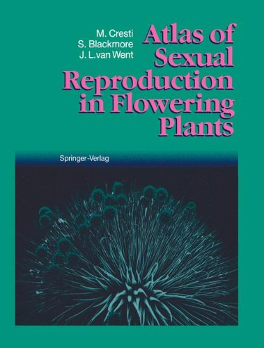 9783540549048: Atlas of Sexual Reproduction in Flowering Plants