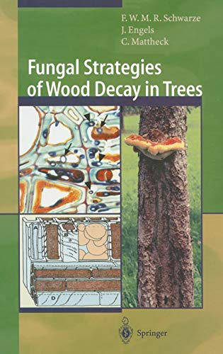 9783540672050: Fungal Strategies of Wood Decay in Trees