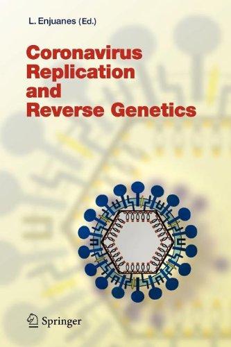 9783540801603: Coronavirus Replication and Reverse Genetics