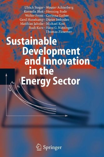 9783540803928: Sustainable Development and Innovation in the Energy Sector