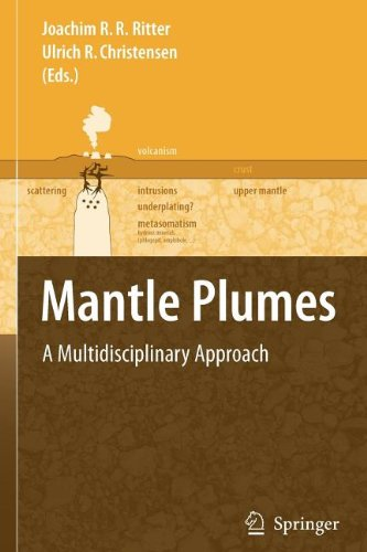 9783540833765: Mantle Plumes