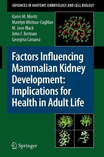 9783540848943: Factors Influencing Mammalian Kidney Development: Implications for Health in Adult Life