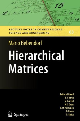 9783540869931: Hierarchical Matrices
