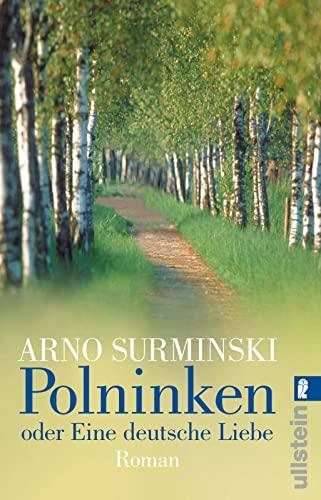 9783548255040: Polninken oder Eine deutsche Liebe