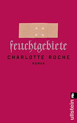 9783548280400: Feuchtgebiete (German Edition)