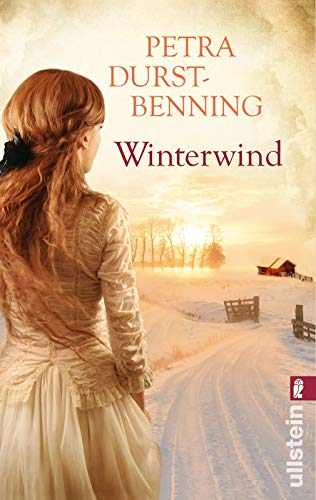9783548287676: Winterwind