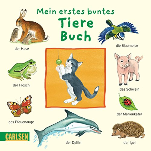 Mein erstes buntes Tiere-Buch - Hofmann, Julia und Diverse