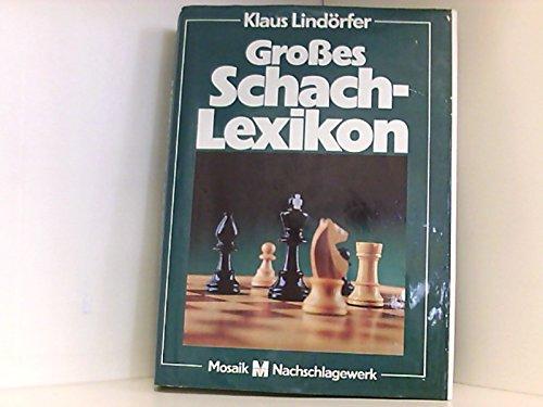 9783570012864: Großes Schachlexikon (6556 094). Geschichte, Theorie und Spielpraxis von A bis Z