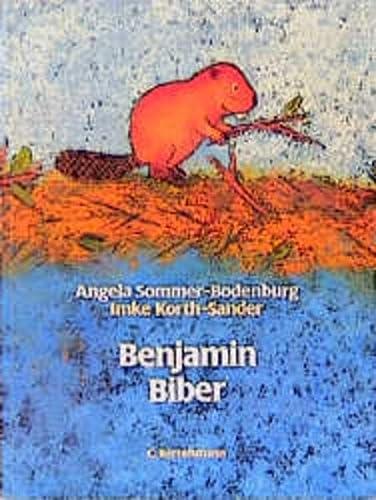 9783570018040: Benjamin Biber
