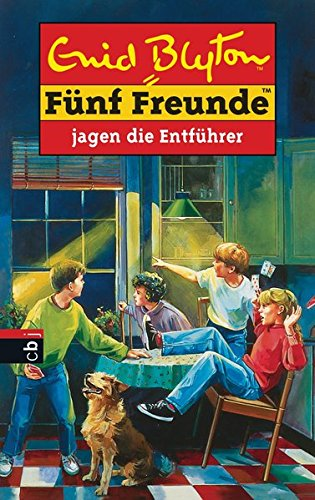 Fünf Freunde, Neubearb., Bd.13, Fünf Freunde jagen die Entführer (Einzelbände, Band 13) - Blyton, Enid
