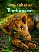 9783570136119: Ganz nah dran: Tierkinder