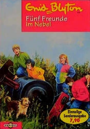 9783570202906: Fünf Freunde im Nebel, Bd 17