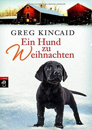 9783570223611: Ein Hund zu Weihnachten