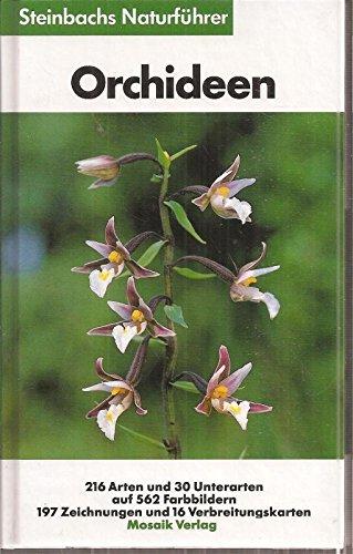 9783576044036: Orchideen